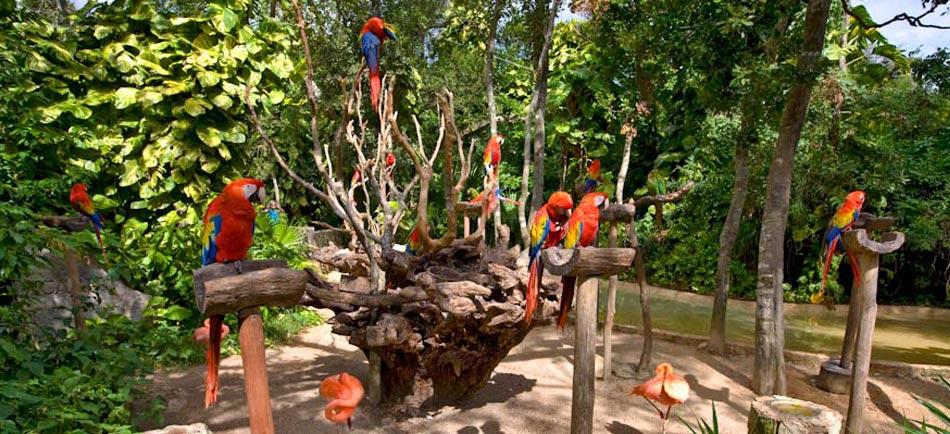 Escudo_Nature_Parks_Ac_natureparks
